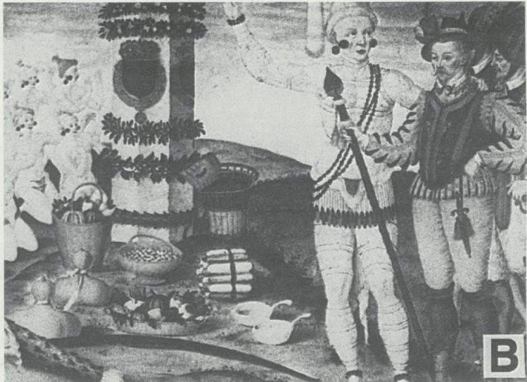 Amerindian1B